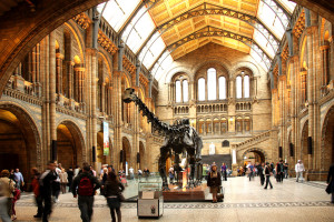 Visit the best museums of London