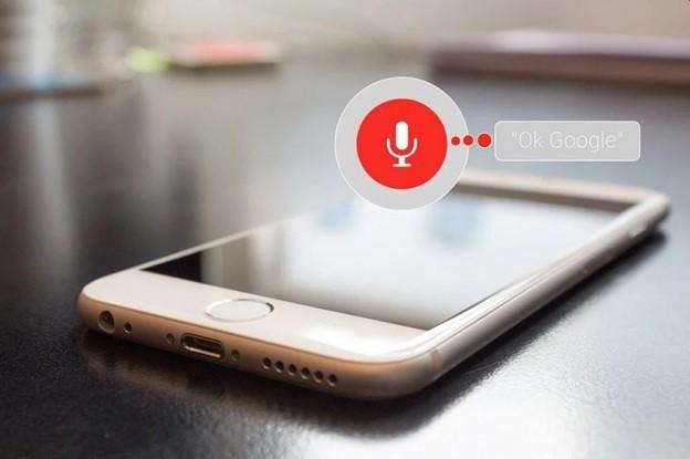 Google Voice searches